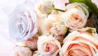 Romantic pastel roses bridal bouquet