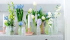 Pale blue and white fresh spring flowers in glass-jar bottles