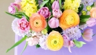 Ranunculus, hyacinth and tulip fresh flower arrangement