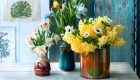 Fresh flowers displayed in assorted vases