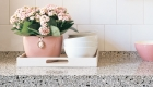 Blush pink flower display, home styling by Kate Mell Flowers