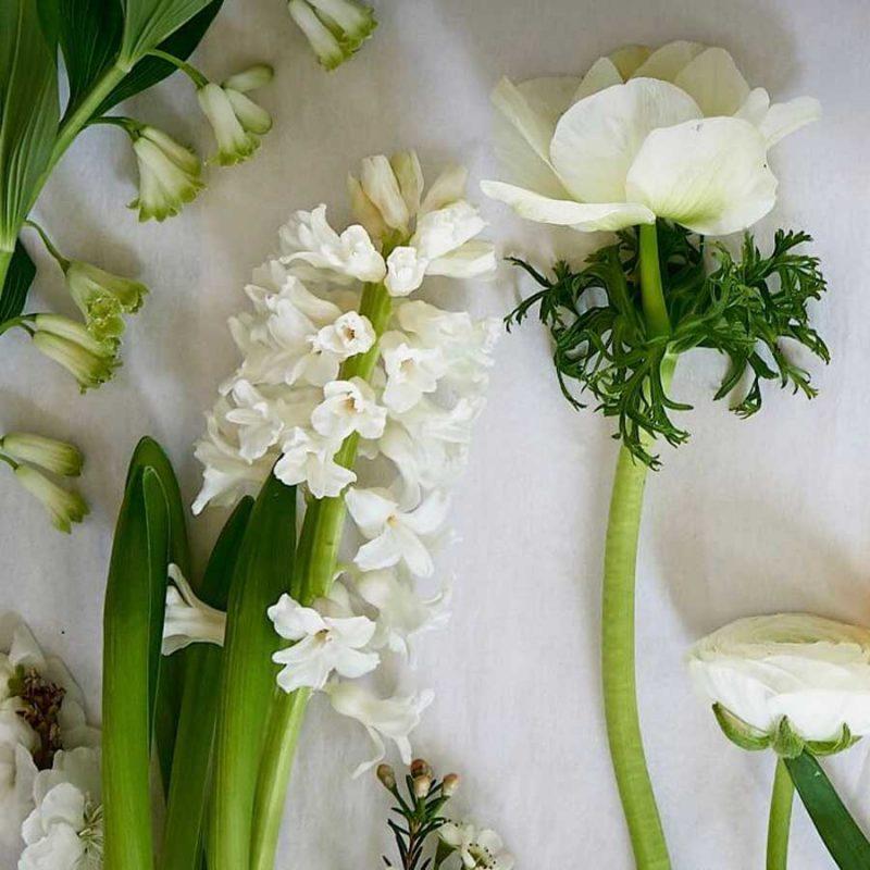 Alabaster & Olive fresh flowers