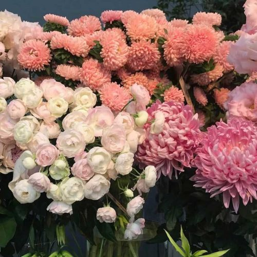 Seasonal Selection of pink & white fresh flowers